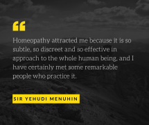 a quote from Yehudi Menuhin