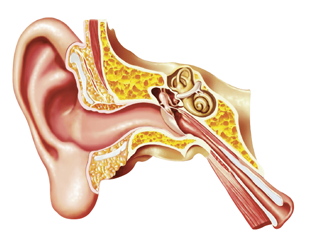 Homeopathy for Ear Problems in Children