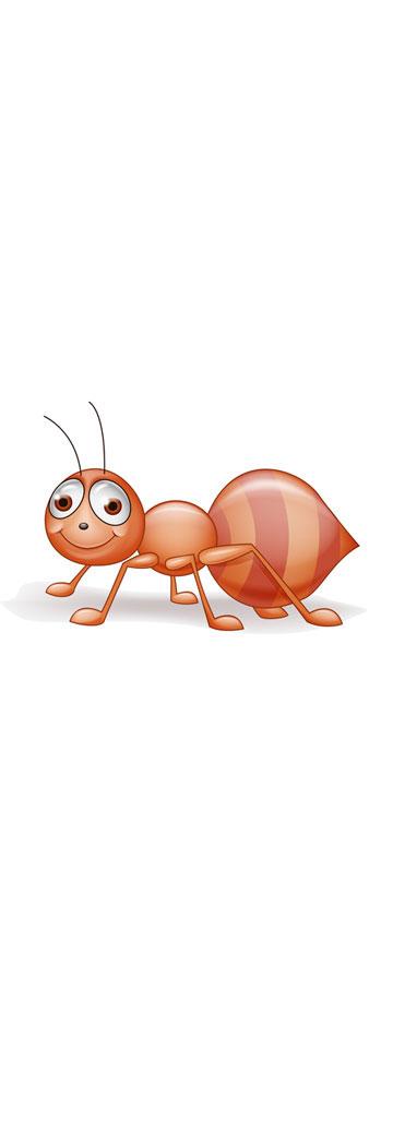 ant-cartoon_longer