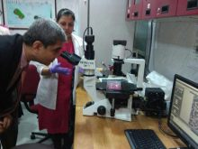 Dr Shah looking at virology lab equipment