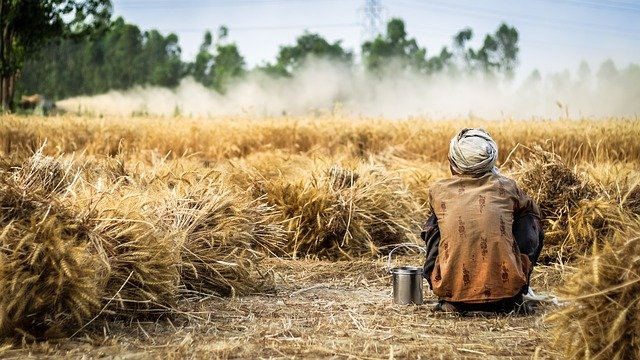 farmers are disillusioned with overuse of pesticides