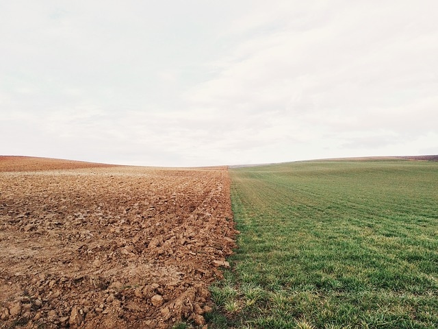 agro-homeopathy is useful to turn dry farmland into green fields